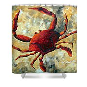 Coastal Crab Decorative Painting Original Art Coastal Luxe Crab By Madart Shower Curtain