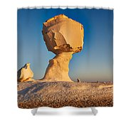 Cock And Mushroom Formation In White Desert Shower Curtain