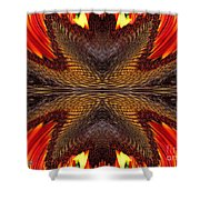 Color Fashion Abstract Shower Curtain
