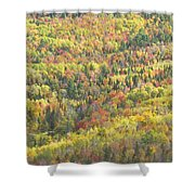 Colorful Autumn Forest In Mount Blue State Park Weld Maine Shower Curtain
