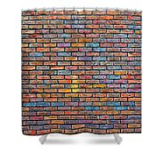 Colorful Brick Wall Texture Shower Curtain