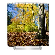 Colorful Fall Autumn Park Shower Curtain
