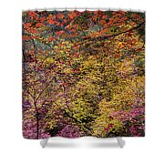 Colorful Leaves On A Tree Shower Curtain