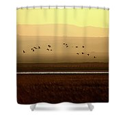 Common Cranes At Gallocanta Lagoon Shower Curtain
