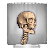 Conceptual Image Of Human Skull Shower Curtain