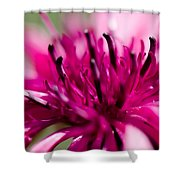 Corny Flower Shower Curtain