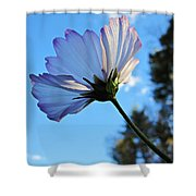 Cosmos To The Sky Shower Curtain