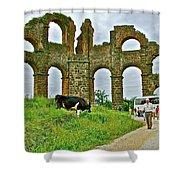 Cow By Second Century Aspendos Aqueduct-turkey Shower Curtain