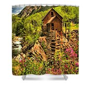 Crystal Mill Wildflowers Shower Curtain
