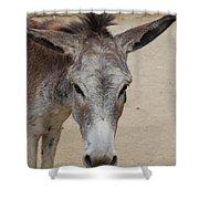 Cute Donkey Shower Curtain