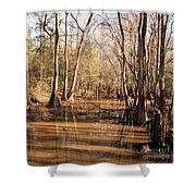 Cypress Waterway Shower Curtain