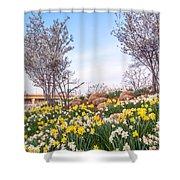 Daffodil Hill Shower Curtain