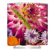 Dahlia Zinnia Bachelor's Buttons Flowers Shower Curtain