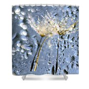Dandelion Fireworks Shower Curtain