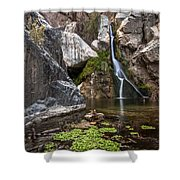 Darwin Falls Shower Curtain