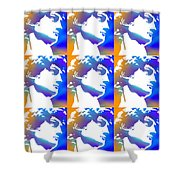 David Repeat Treatment One Color Shower Curtain