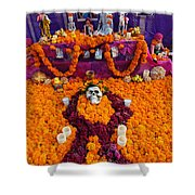 Day Of The Dead Altar, Mexico Shower Curtain
