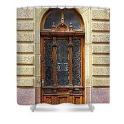 Decorative Door Shower Curtain