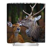 Deer Love Shower Curtain