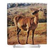 Deer On Mountain  Shower Curtain