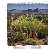 Desert Wildflowers Shower Curtain