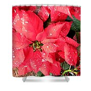 Diamond Encrusted Poinsettias Shower Curtain