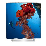 Diver Looks On At A Bright Red Soft Shower Curtain by Steve Jones
