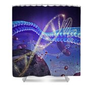 Dna And Chromosomes Shower Curtain