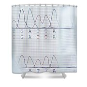Dna Sequencing Shower Curtain