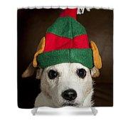 Dog Wearing Elf Ears, Christmas Portrait Shower Curtain