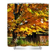 Door County Yellow Maple Migrant Shack Shower Curtain