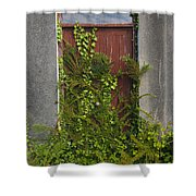 Door Of Old House Shower Curtain