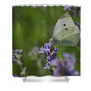 Down The Gorge Shower Curtain