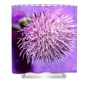 Dream In Violet Shower Curtain
