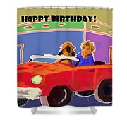 Driving Miss Daisy Shower Curtain