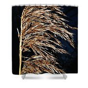 Dry Grass Shower Curtain