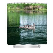 Duck Call Shower Curtain
