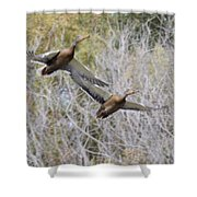 Duck Season? Shower Curtain