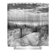 Dune Fences Shower Curtain by Debra and Dave Vanderlaan