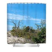 Dune Tree Shower Curtain