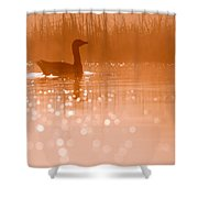 Early Morning Magic Shower Curtain