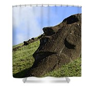Easter Island 18 Shower Curtain