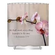 Ecclesiastes 3 11 He Hath Made Everything Beautiful Shower Curtain