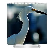 Egret Of Matlacha 2 Shower Curtain