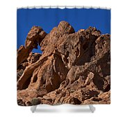 Elephant Rock Valley Of Fire State Park Nevada Shower Curtain