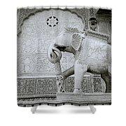 The Beautiful Elephant Shower Curtain