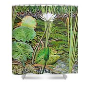 Emerald Lily Pond Shower Curtain