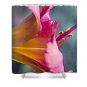 Enchanting Florals Shower Curtain
