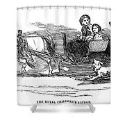 England Royal Sledge, 1854 Shower Curtain
