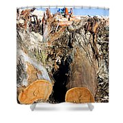 Environmental Destruction In Construction  Shower Curtain